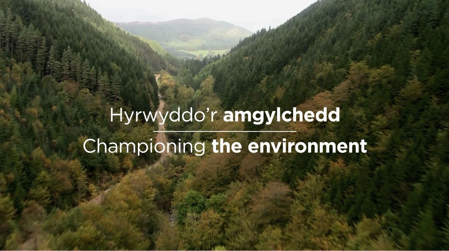 Championing the environment